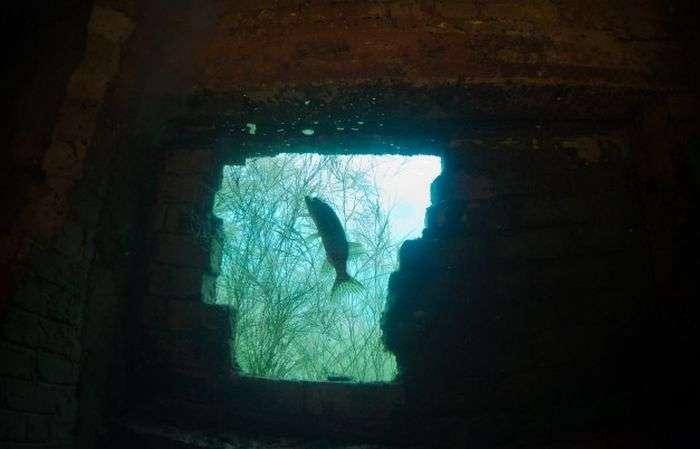 Затоплена вязниця (54 фото)