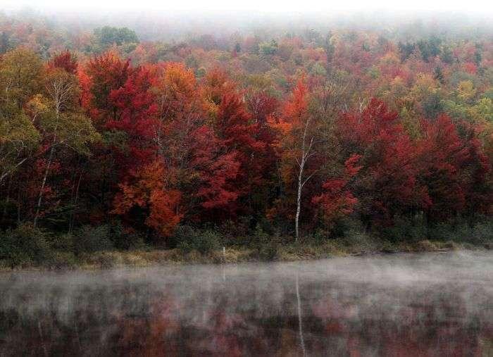 Осінь у всій красі (40 фото)