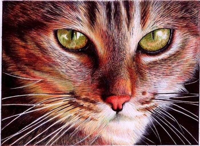 Дивовижні малюнки кольоровими авторучками (24 фото)