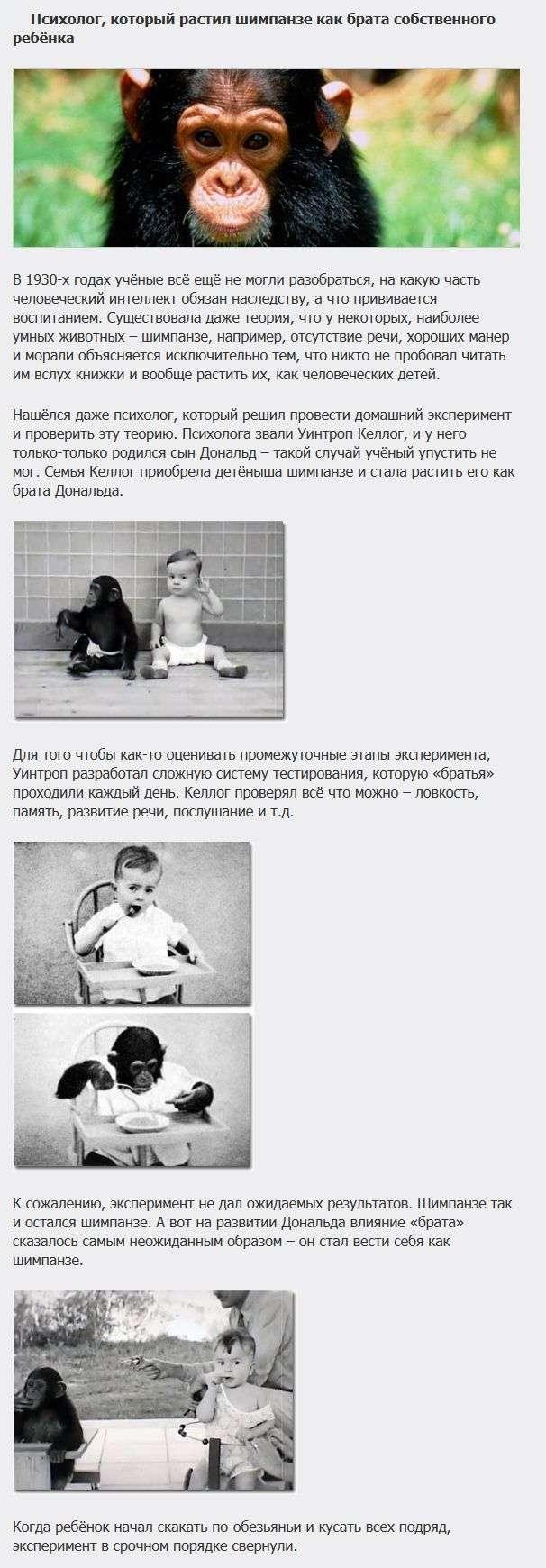 ТОП-5 самих жахливих експериментів над дітьми (5 фото)