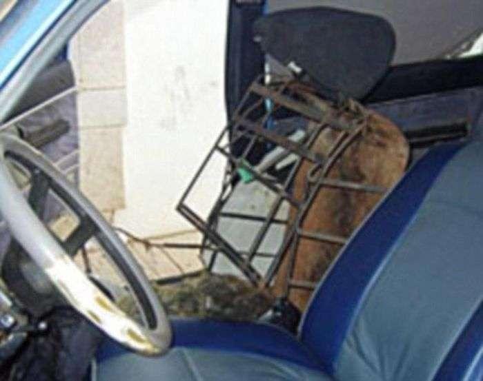 Людина-крісло був затриманий на кордоні Іспанії (2 фото)