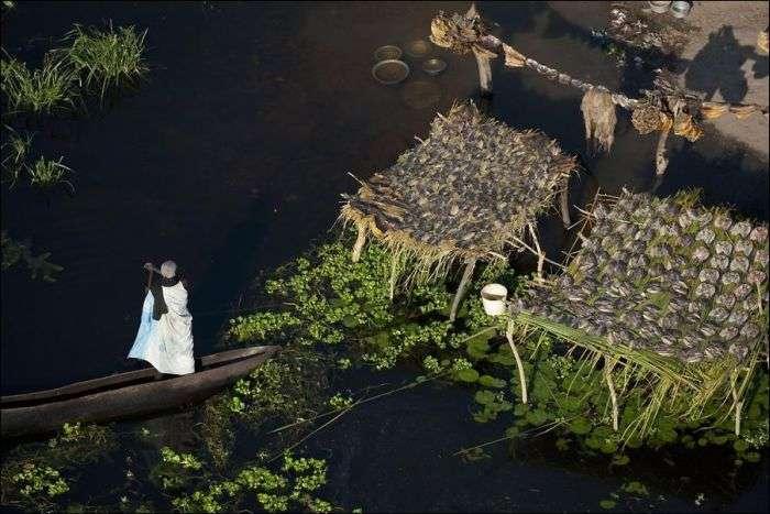 Найбільше болото у світі (9 фото)